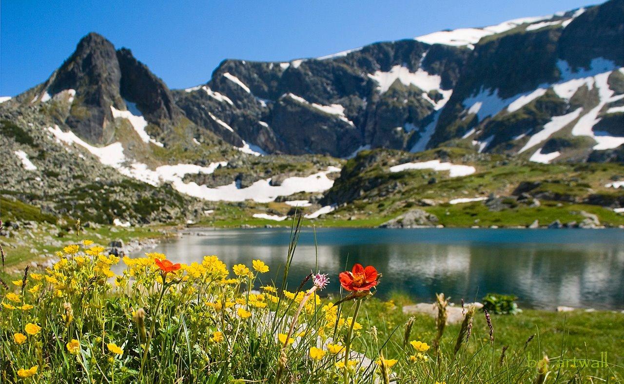 България, природа
