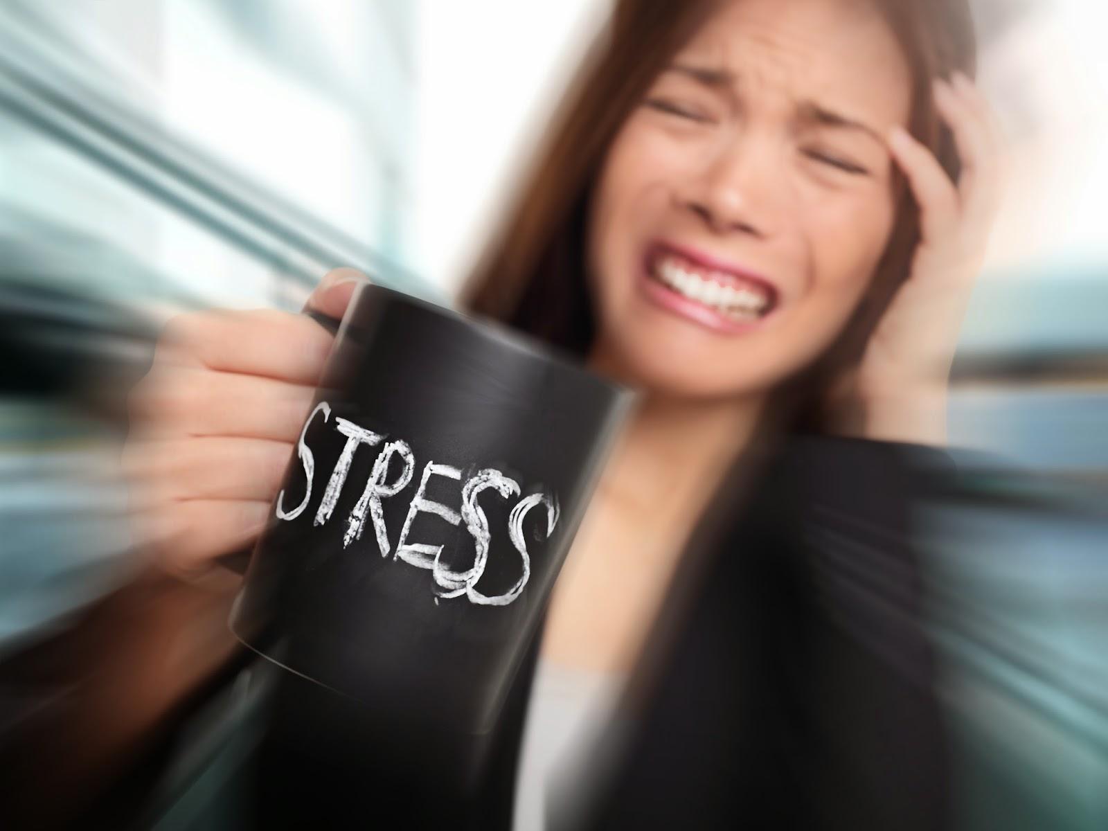 Стрес, тревоги и страсти – ежедневие, които ни разболяват и убиват - Дебати