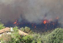 пожар в Кресненското дефиле