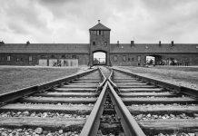 лагер на смъртта, концлагер
