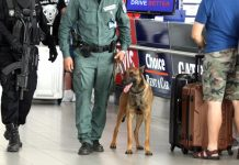 гранична полиция, летище София