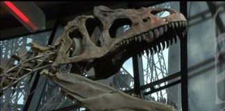 Dino_head