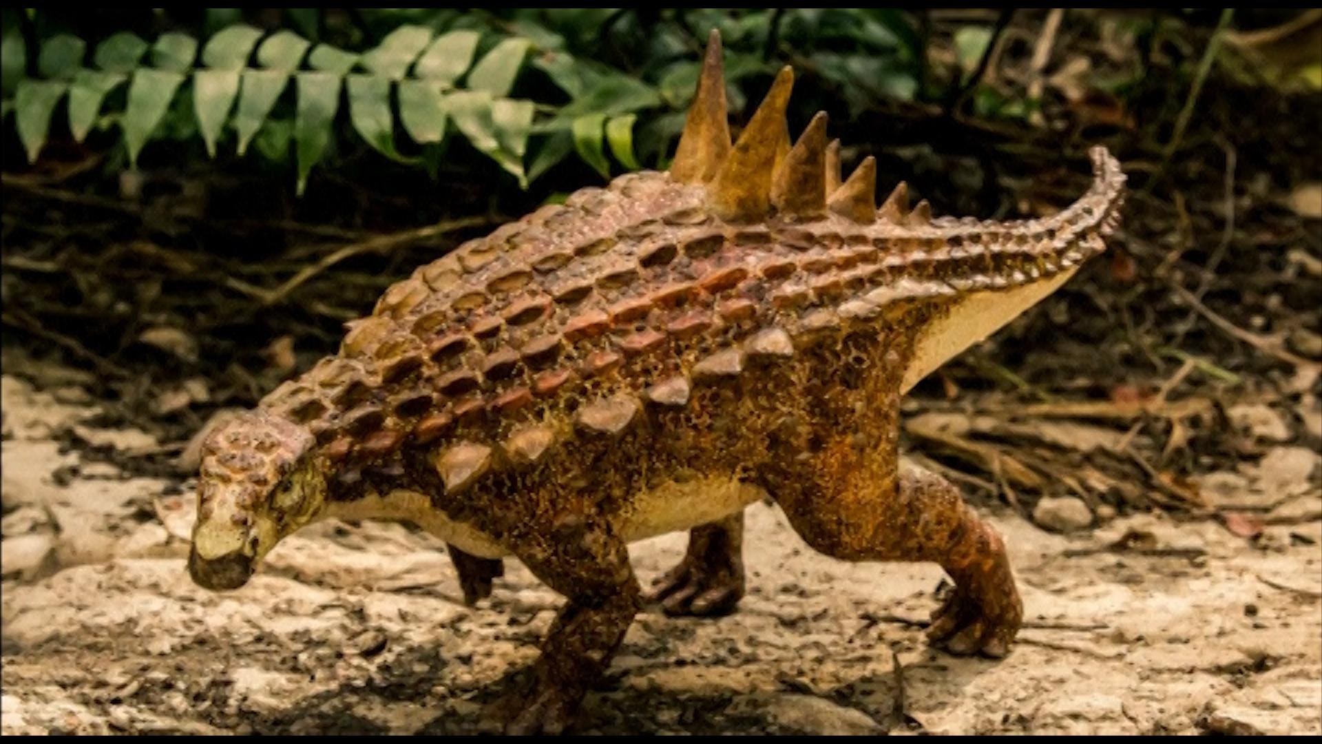 Dinosaur_Mexico