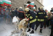 протест на овцевъди