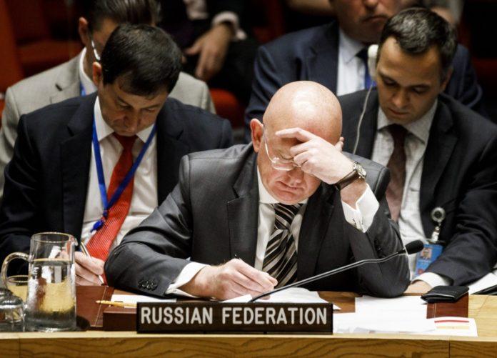 Василий Небензя, Русия, китики,