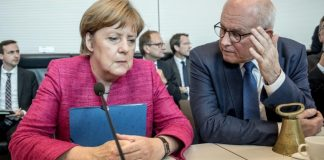 Volker Kauder_Merkel