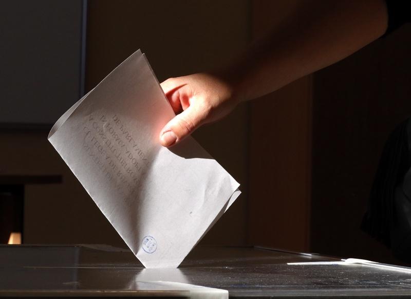 Румъния, референдум, бюлетина