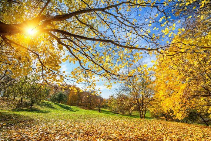 време, слънце, есен