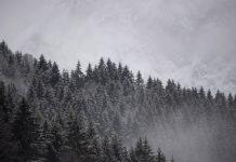 Гармиш-Партенкирхен, сняг