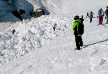 Лавина, Швейцария, Алпи