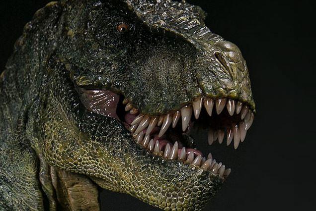 Скоти, динозаври, тиранозавър