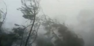 циклон, Индия