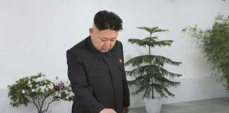 Ким Чен Ун, избори, Северна Корея
