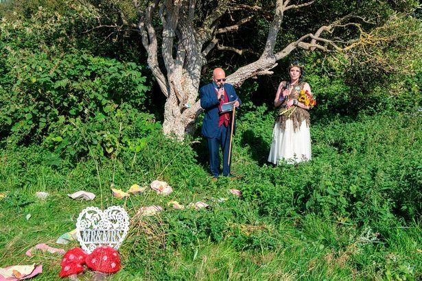 сватба, дърво