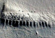 Антарктида, структура
