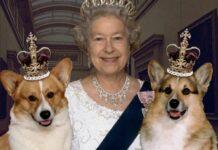 кралица Елизабет II, корги