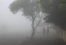мъгла и дъжд
