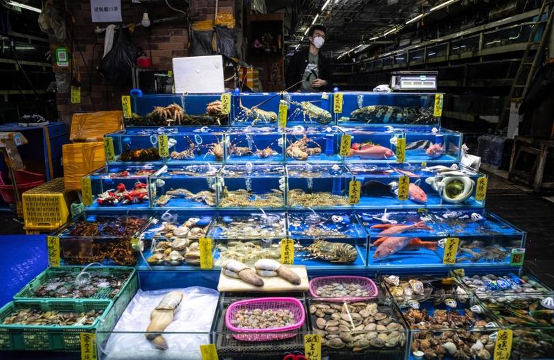 пазар, Ухан