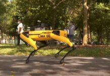 Куче, робот