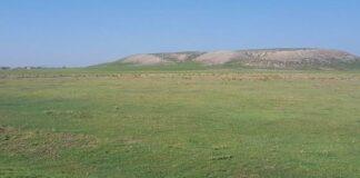 Турция археолози