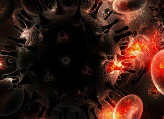 коронавирус, СПИН