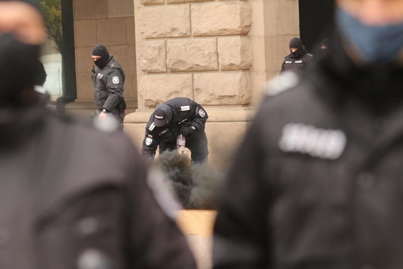 димка протест
