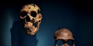 неандерталци, война