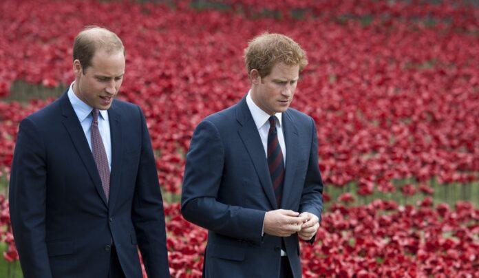 Хари и Уилям
