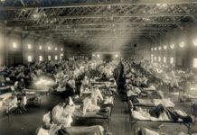 Испански грип, пандемия